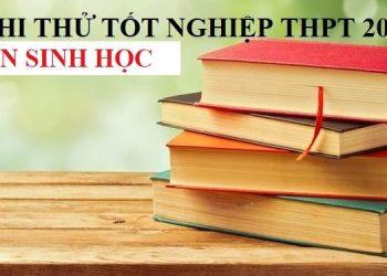 Đề thi thử TN THPT 2021 môn Sinh học theo chuẩn cấu trúc minh họa